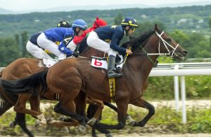 Horse race for the prize Oaks.